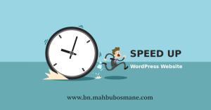 speedup-wordpress-website